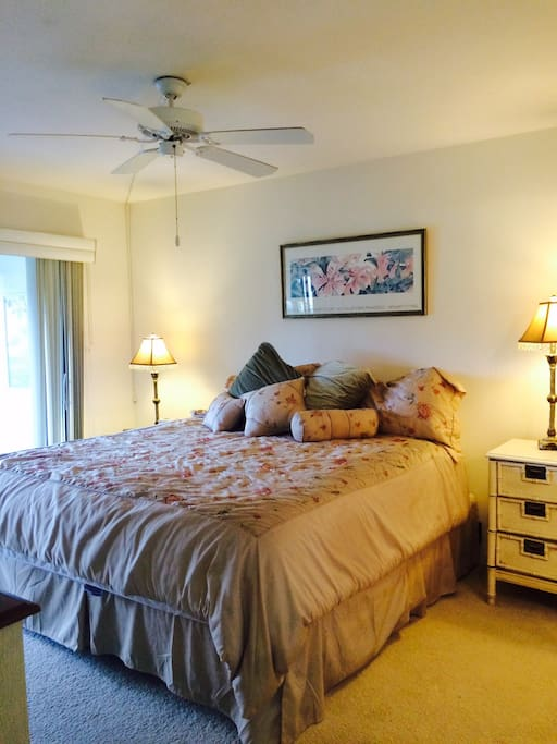 Master suite with king sized pillow top mattress.  TV  walk in closet and private bath with shower.