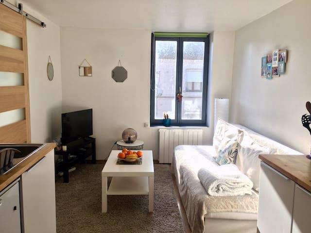 Studio agréable et lumineux de 32 m2.