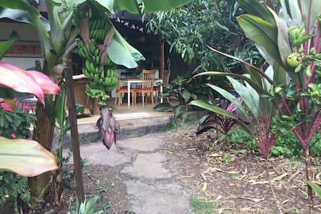 Beautiful~Bohemian~Tropical Kealakekua Bay Retreat - Captain Cook - Saari