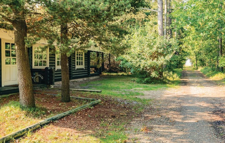 Log house close to beach on a forest style plot