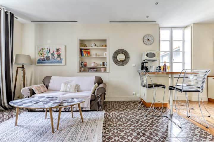 Lovely apartment close to medieval Cité and Aude