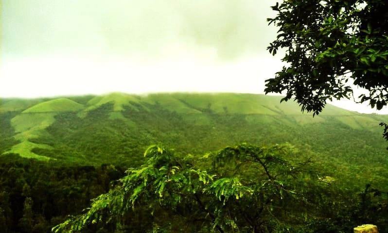 Oak Ridge - Nature lovers paradise (Food + Stay)