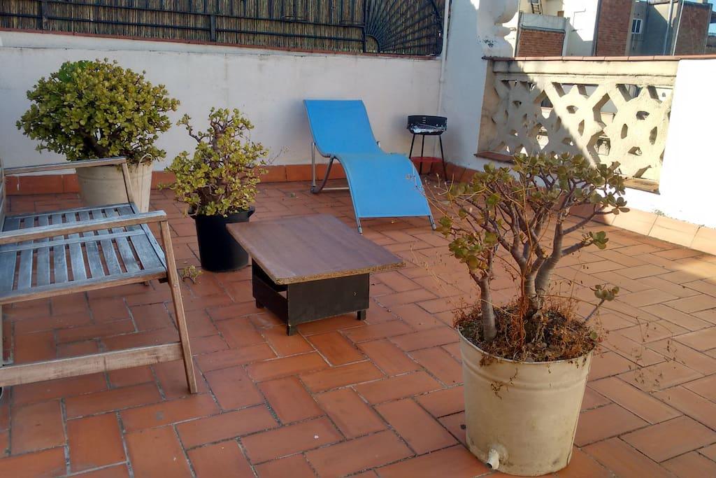 The other side of the terrace with a rustic bench and plants