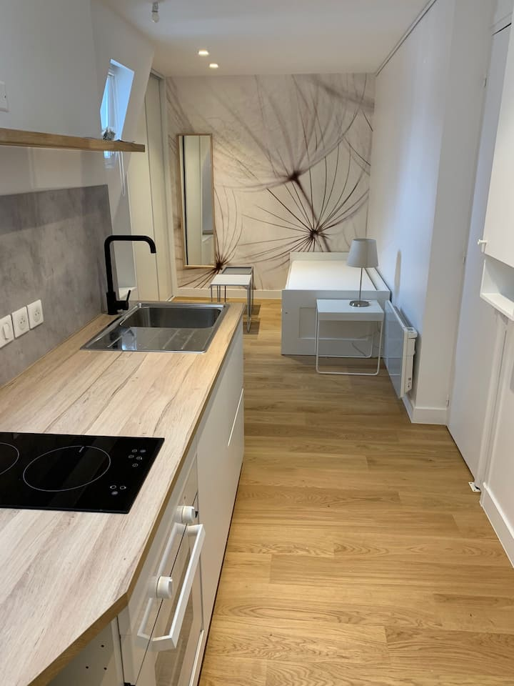 Studio totally refurbished in the 7th district