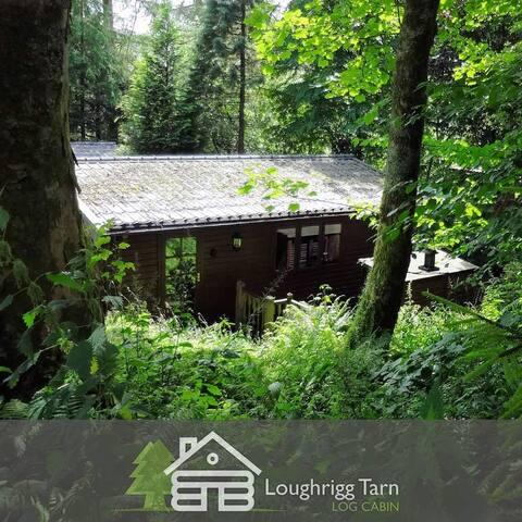 Loughrigg Tarn (Log Cabin)