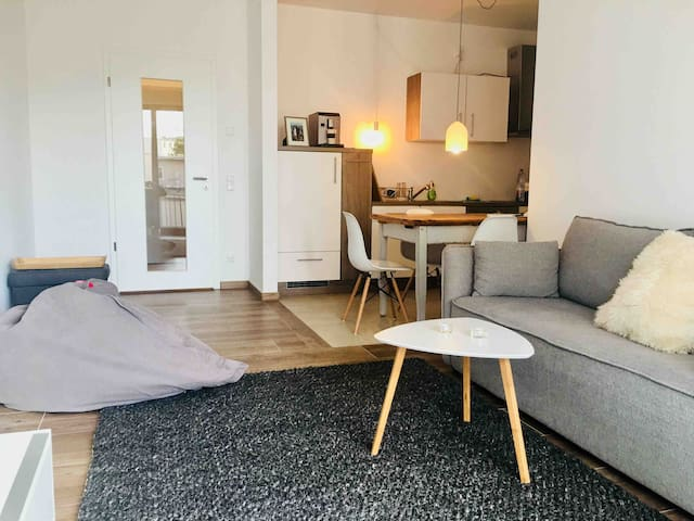 bright & cosy flat directly at the park Sanssouci