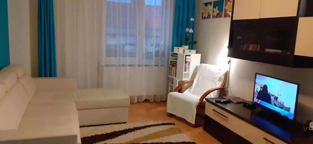 Apartament Alex Sovata