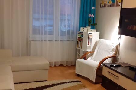 Apartament Alex Sovata