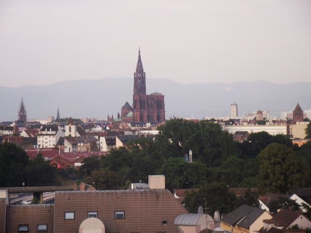 Beautiful 3 rooms - View on the Dom and Strasbourg