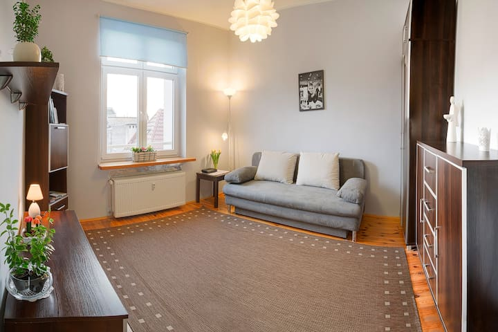 Lovely apartment by the castle  - Szczecin - Departamento