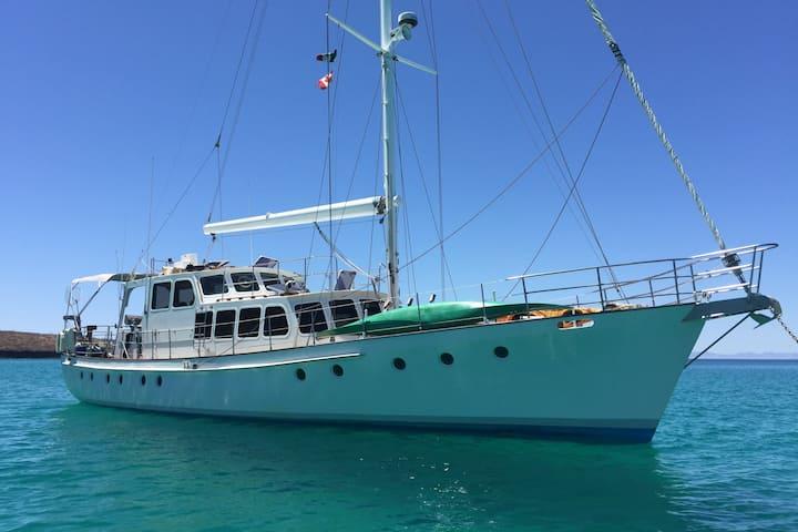 Big Beautiful Boat - Charter to Espiritu Santos