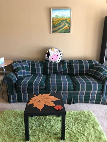 Exclusive comfortable 1b1b entire apt Downtown MTV