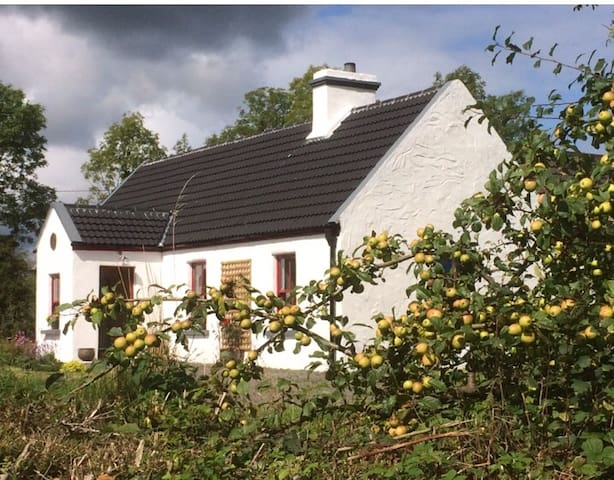 Dempsey's cottage lovingly restored well equipped