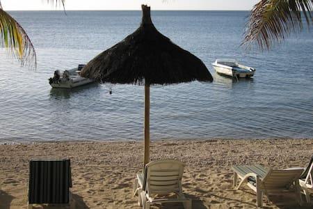 Apartment Set Opposite Indian Ocean