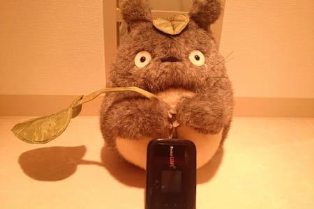 City Totoro( Super FUN studio )