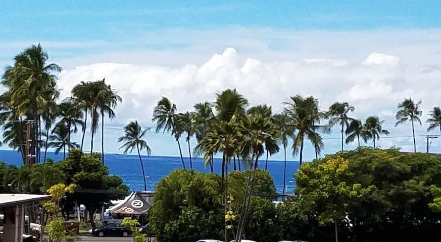 Heart of Kona-Newly Remodeled-Partial Ocean View