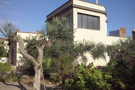 Villa Miranda  - Sant'andrea Bonagia - วิลล่า