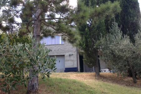 Apartment in the Tuscan countryside - Chiassa Superiore