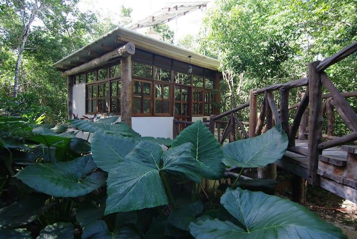 Casita Milagros-A Jungle Tree House