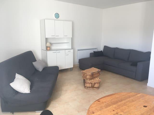 Appartement 48 m² avec vue la mayenne grand séjour