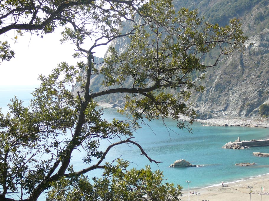The spectacular view over the Cinque Terre sea