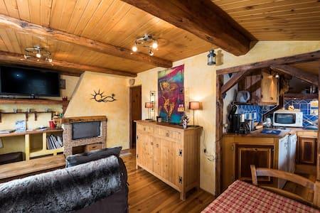 appartement cosy ski aux pieds