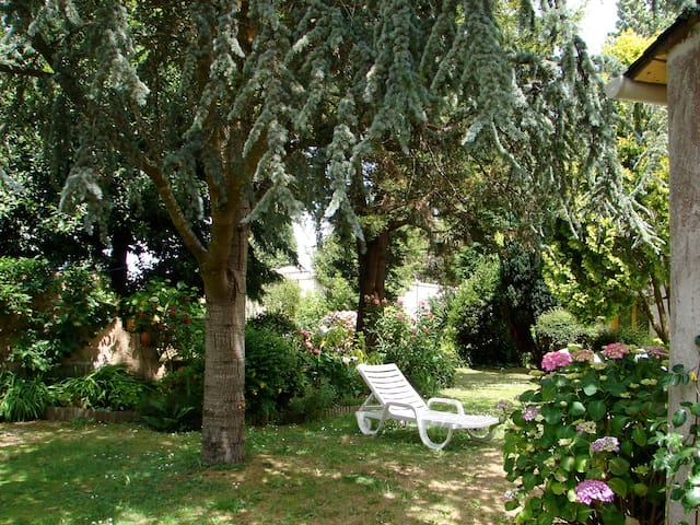studio rez de jardin sur petit parc