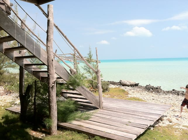 The Tree House, Eleuthera, Bahamas - Current - Rumah
