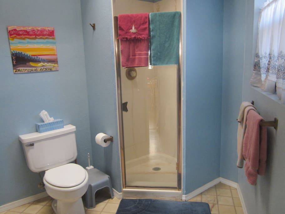 Guest bath with roomy shower.