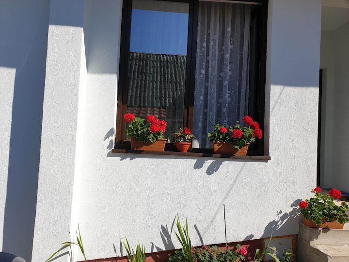 Casa Dalina in Maramures