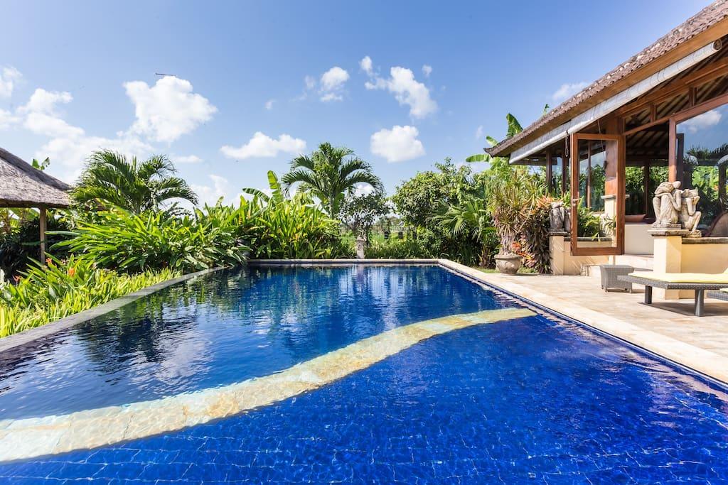 Amazing large swimming pool