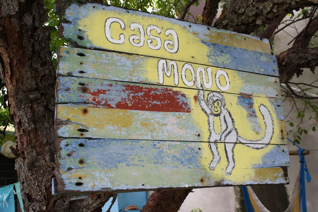 Casa Mono welcomes you!