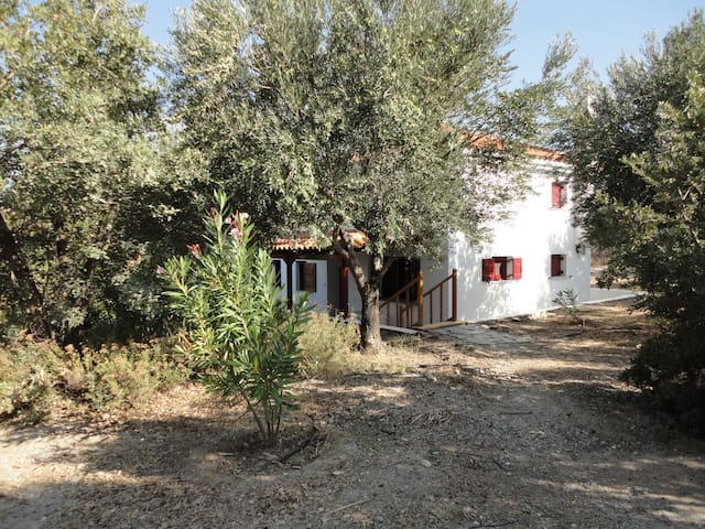 The oleander house on the hill. - Ερεσός - Casa