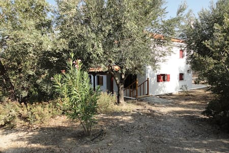 The oleander house on the hill. - Ερεσός
