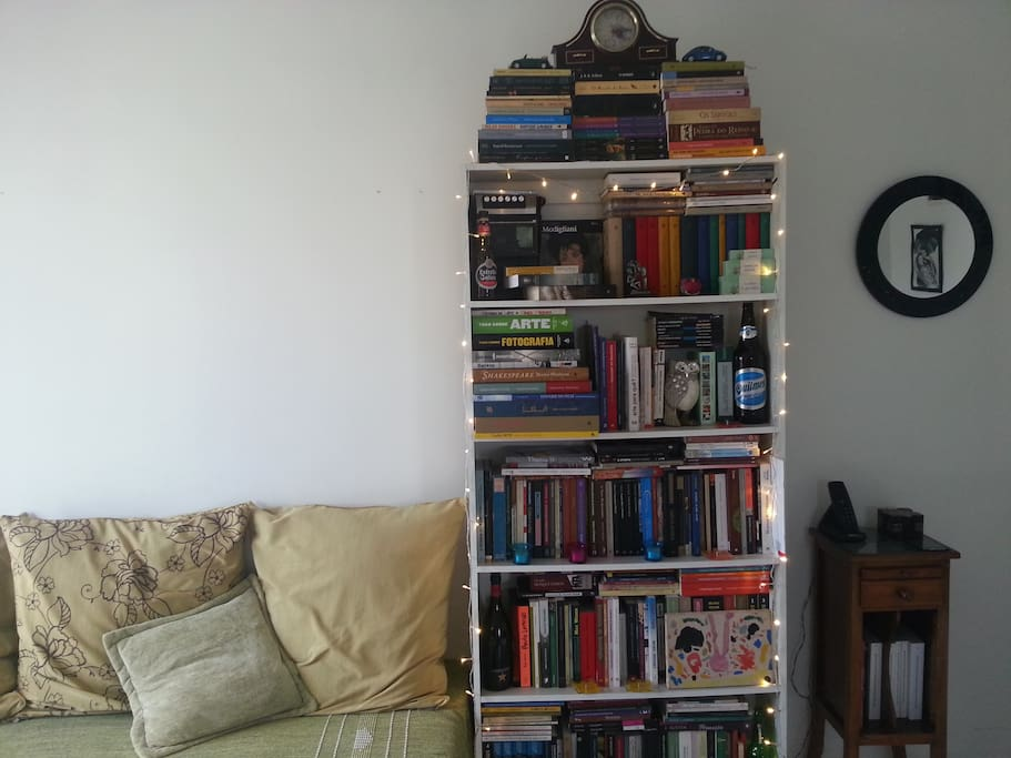 A lot of books (many of History, Art and Literature)