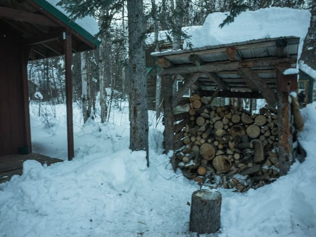 An authentic Alaskan wood pile where you can obtain or chop wood at