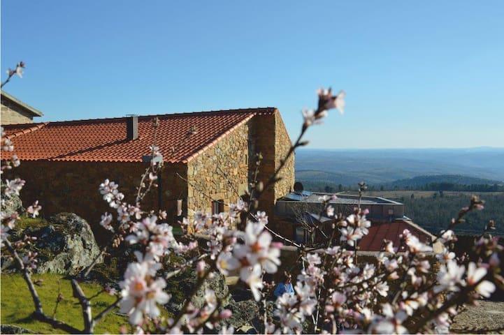 Casa da Amendoeira. Ter | Casa de Campo - Figueira de Castelo Rodrigo - Vila