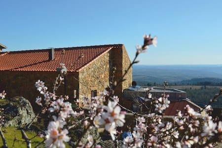 Casa da Amendoeira. Ter | Casa de Campo - Figueira de Castelo Rodrigo - Casa de camp