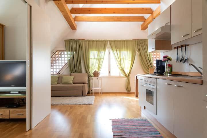 Apartmentwohnung 5 im Haus Ebner