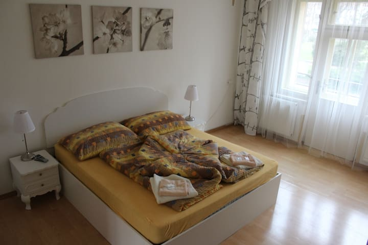 Penzion Radost - apartment - Poděbrady - Bed & Breakfast