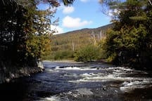 WHITEWATER, a few hundred yards upstream from our cabin.