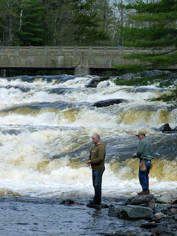 FISHING - Spring runoff on Big Wilson Falls is a good time to catch brookies and salmon.