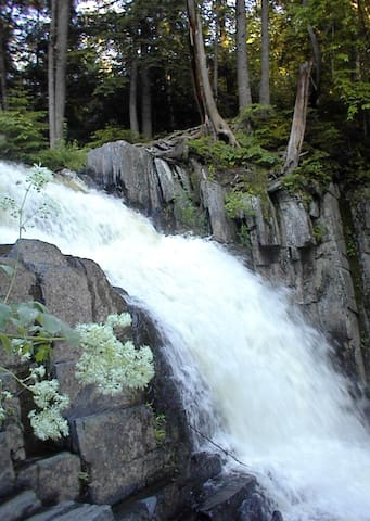 LITTLE WILSON FALLS - A 30-minute hike from the cabin, this is the highest waterfall on the Appalachian Trail.