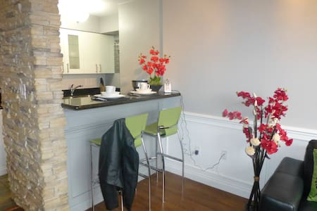 Enjoy a beautifully renovated studio in the heart of the West End of Vancouver. Walk to any of the hundreds of attractions that surround the apartment. From beaches to seawalls to restaurants  you will never be at a loss of what to do. AC included.