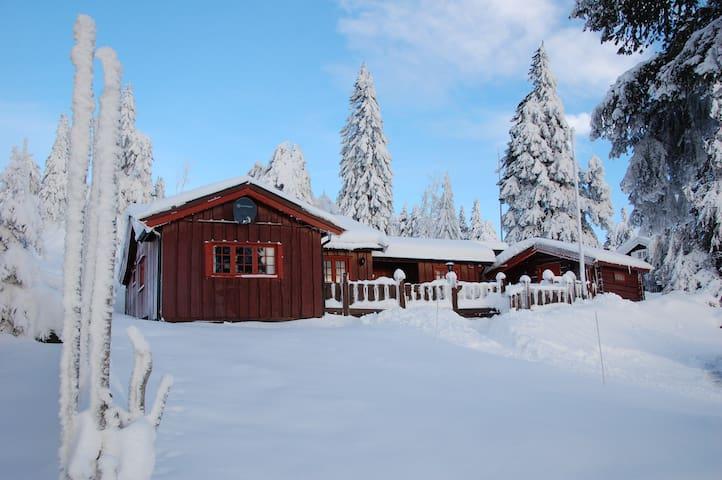 Charming family cabin. - Ringsaker - Cabin