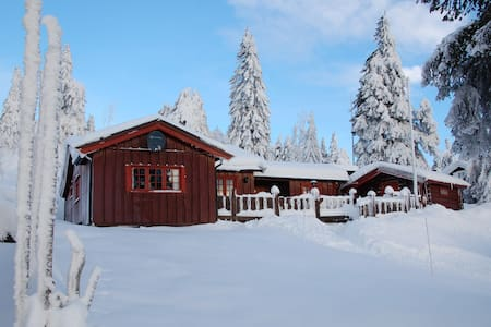 Charming family cabin.