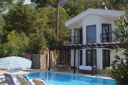 fethiye ölüdeniz ovacıkta 3+1 özel havuzlu villa - Fethiye - Villa