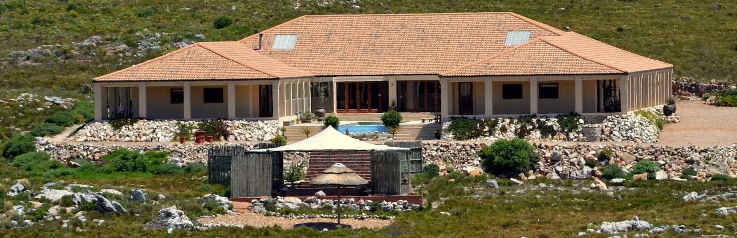 Nature at your feet and fresh air! - Pringle Bay - Bed & Breakfast