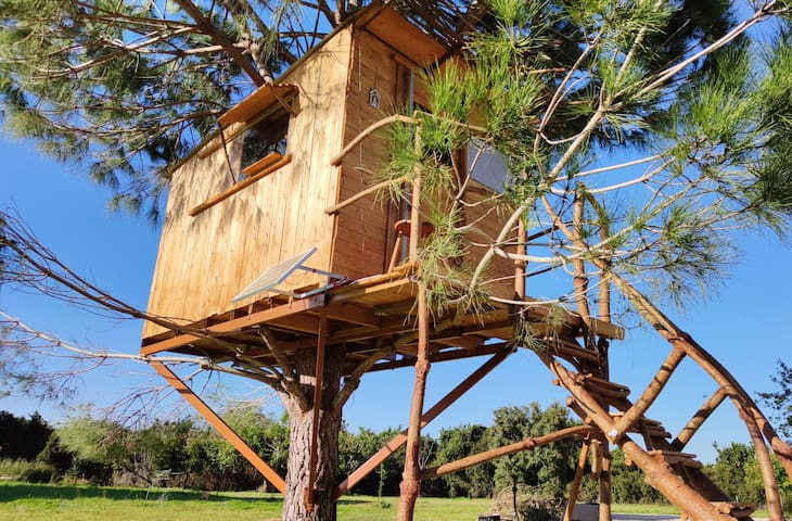 "Ionian Treehouse Ecohosting ""Cuckoo's nest"""
