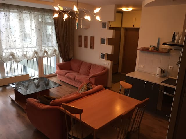 Modern apartment next to shopping center Akropolis - Klaipėda - Apartment